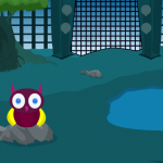 Wildlife Park Escape