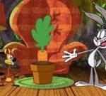 New Looney Tunes: Carrot Crisis
